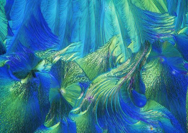 483-03 Hydrochinon, Aquarius .jpg