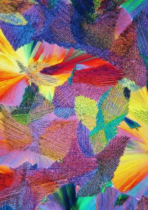 221-04 TRIS Thiocarbamide.jpg