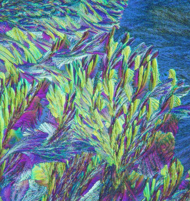 411-39 Hydrochinon, Wijnsteenzuur .jpg