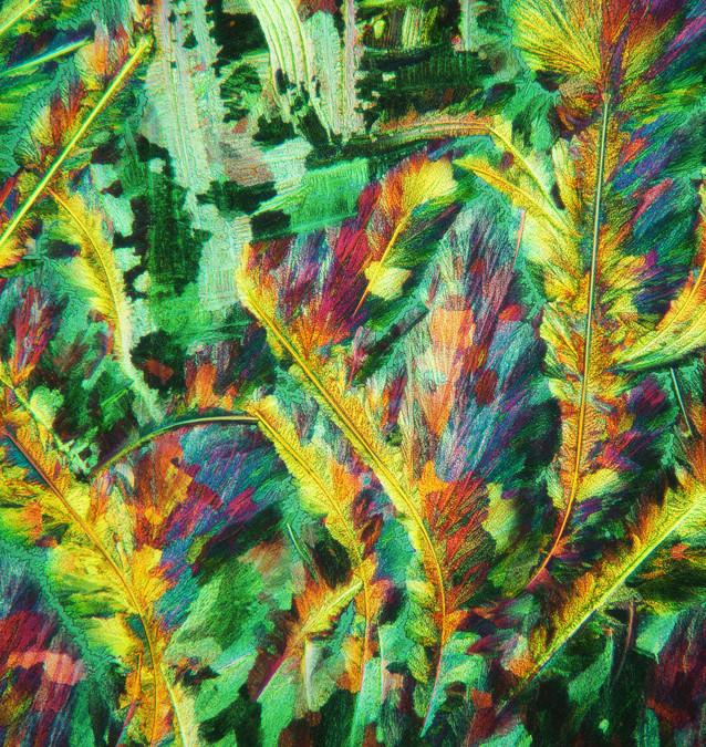 549-34 Thiocarbamide, Ureum .jpg