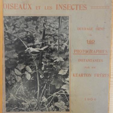 «L'art de surprendre et de photographier les oiseaux et les insectes» - Kearton Frères - 30€