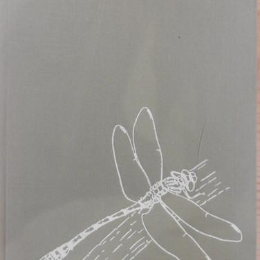 «Les Libéllules(odonates) » - Paul-A. Robert - 100€