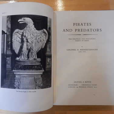 «Pirates and Predators- the piratical and predatory habits of birds» - 100€