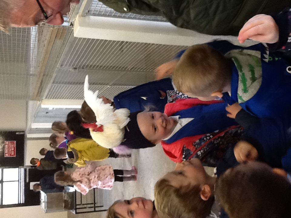 P1 Trip to Mellon Farm