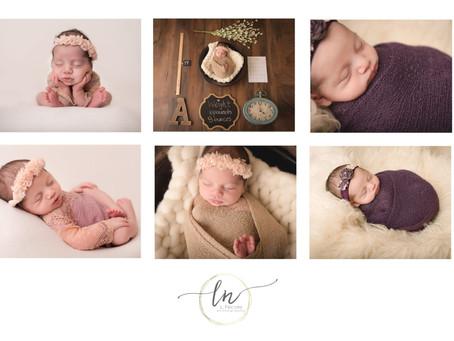 Newborn Session  Richmond Newborn Photographer