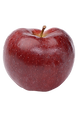 Often a favorite among children, the Spartan is a small sweet apple with a satisfying sugar rush! It is great for eating, as well as juicing.