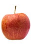 With red-striped skin tinged with yellow and a firm and juicy flesh, this apple has a lively flavor and is a pleasant dessert apple. Great for fresh eating, cooking, baking and excellent for apple cider.