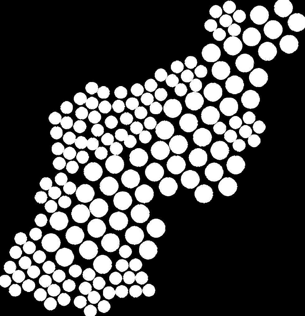 Dot Pattern White_2500x.png