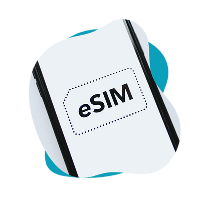 Modele 1 WIX eSIM 2.png