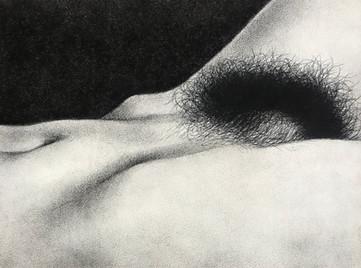 Untitled (Terrane)