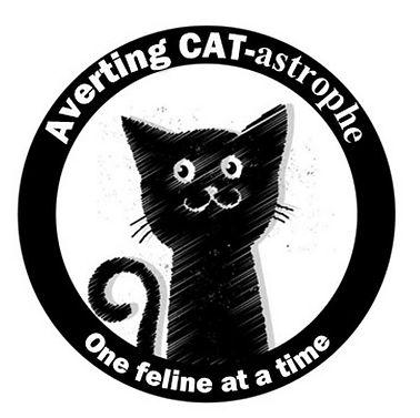 Averting Catastrophe.jpg