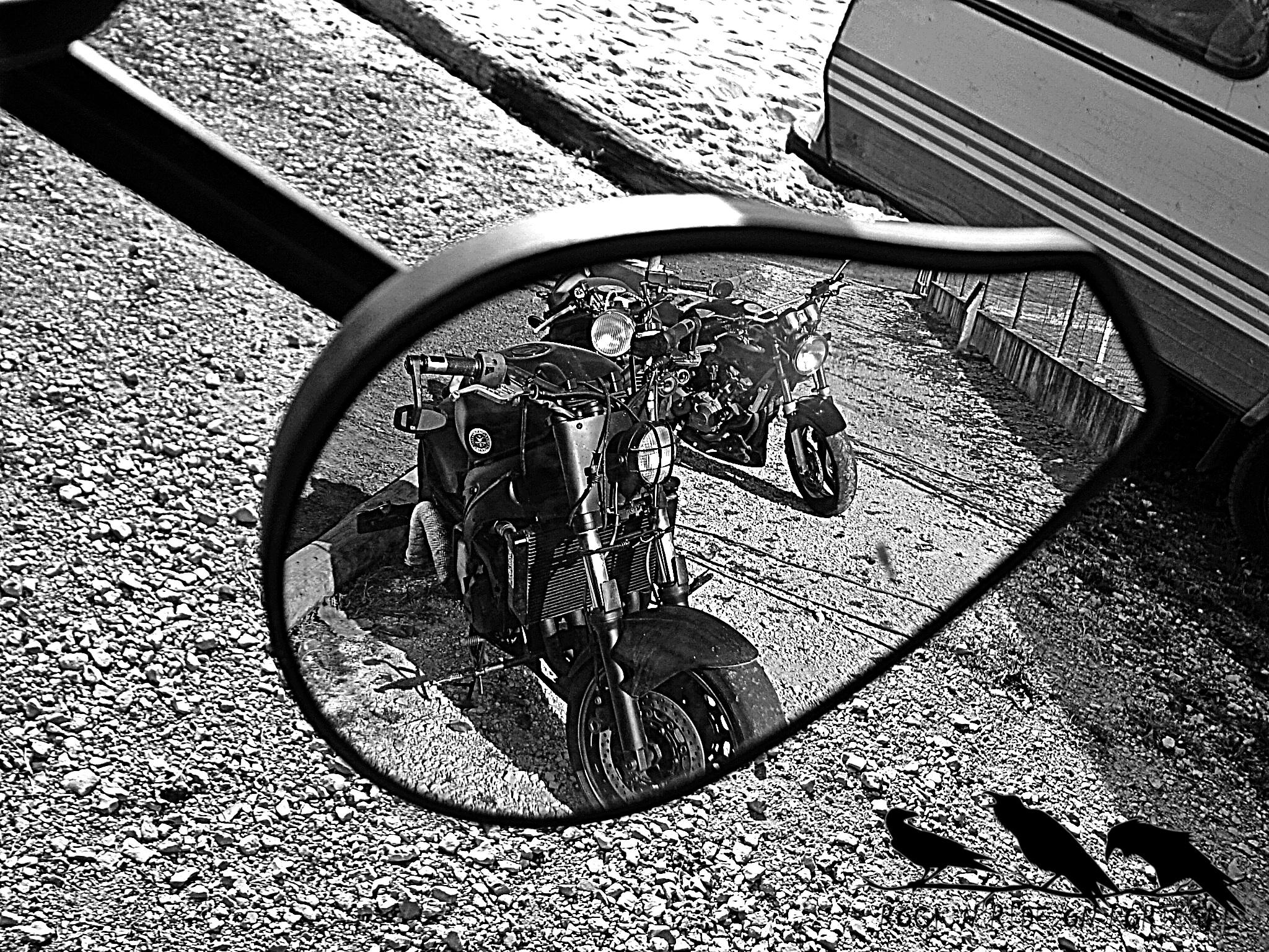 IX Ajuntamento Biker