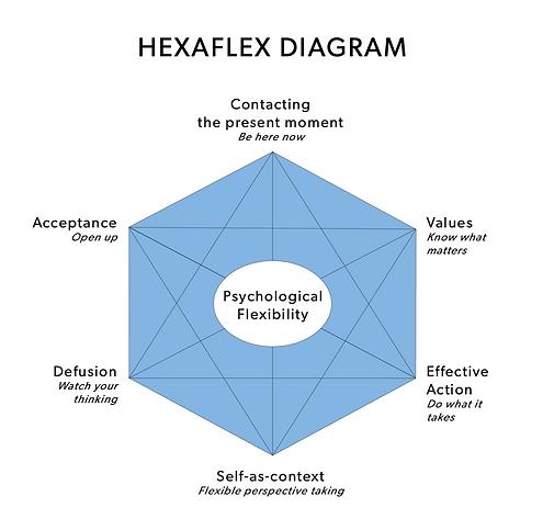 ACT hexaflex diagram