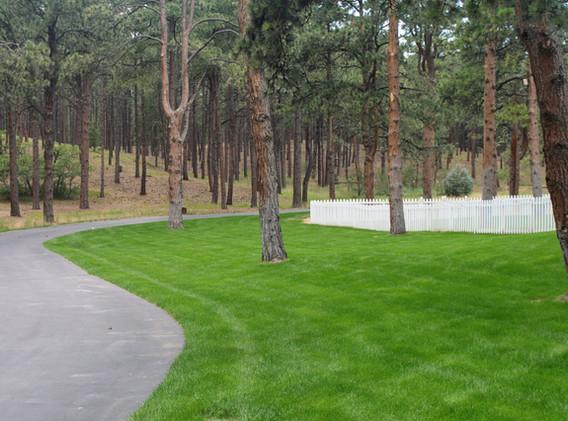 Beautiful Colorado Springs Landscaping D