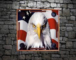 US flag & Eagle