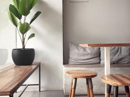 Vasos autoirrigáveis: lindos na decor e perfeitos para os esquecidos.