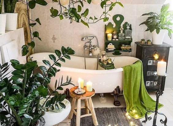 Plantas para colocar no seu banheiro