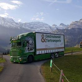 raschle_Tiertransport3.jpg