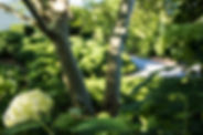 Kappeler_Gartenwelt-14.jpg