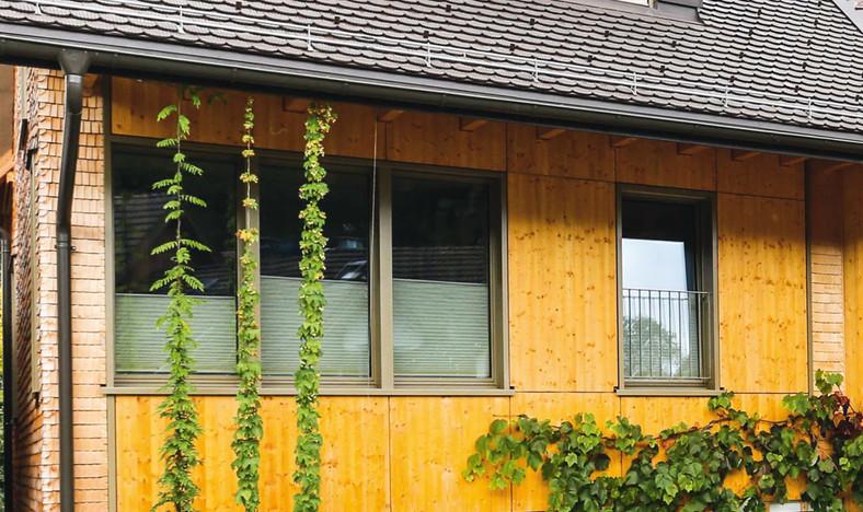 Hauseinbau «Salenstrasse», Uzwil-Niederstetten SG