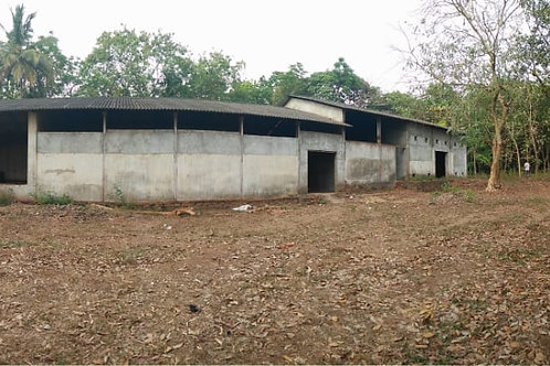 3.5 Acres of Land  near Puthancurz in Ernakulam