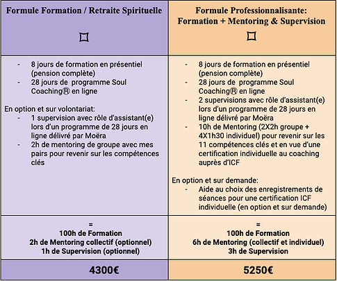 Forfaits formation Praticiens Soul Coach