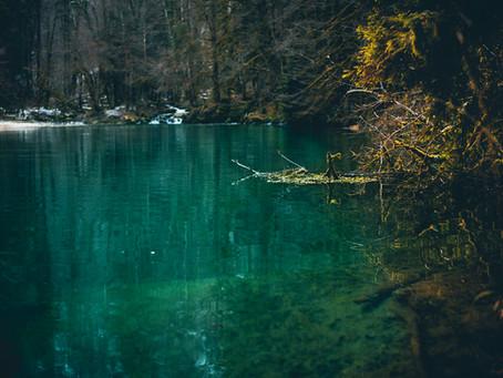 A la découverte du Lac Vert : points de vue et aventure