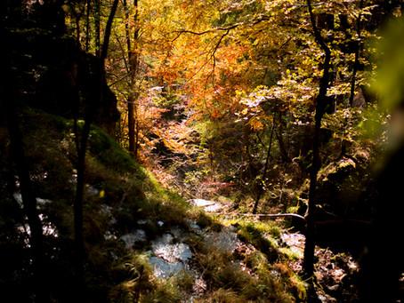 Sentier du Gore Virat : cascades et couleurs de feu