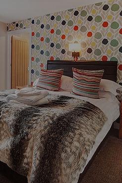 room_5_1_edited.jpg