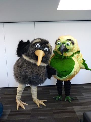 Native New Zealand Bird Mascots