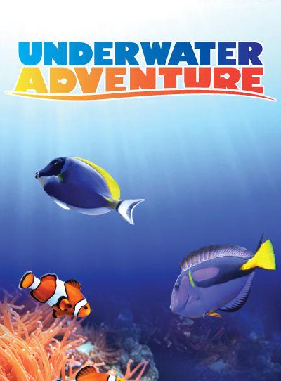 Countdown-Underwater-Window.jpg