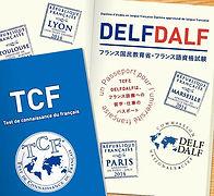 tcf delf dalf image.jpg