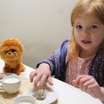 Teddy bears tea party