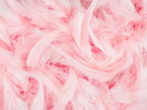 ピンク色は美人の色♡