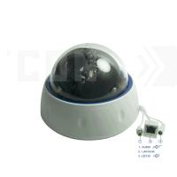 SAF-IPA395.Full HD. Купольная IP камера с подключением активного микрофона.