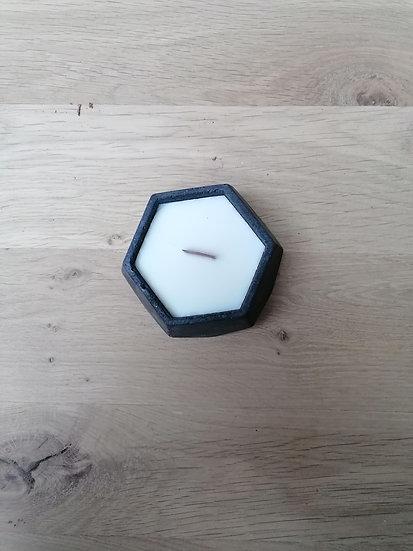 Forsythia Ø 8 cm