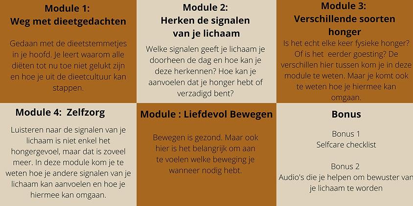 overzicht modules.jpg