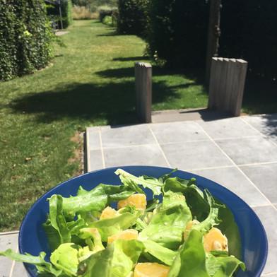 Slaatje met appelsien, postelein en zalm