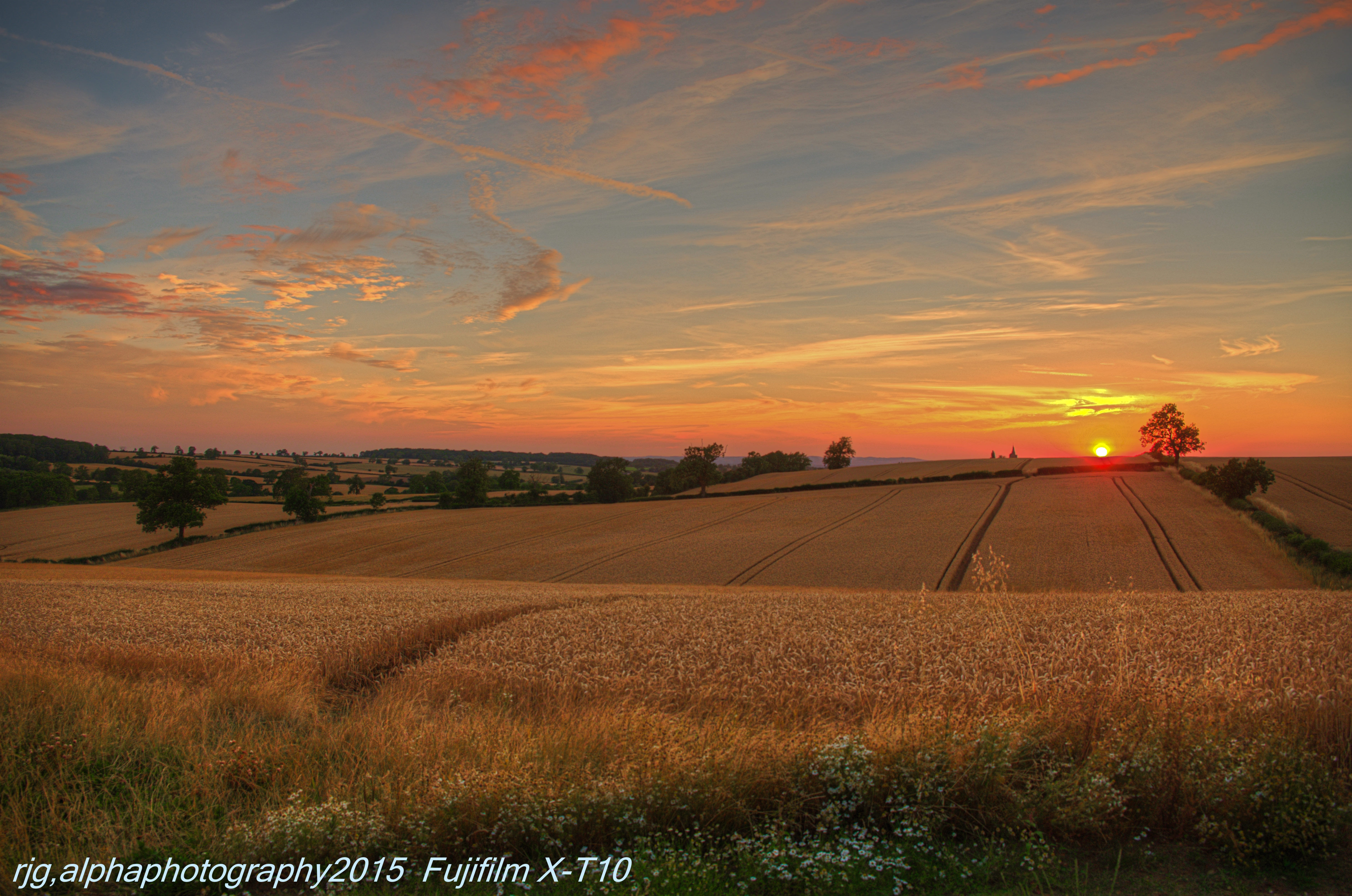 south croxton  (1)