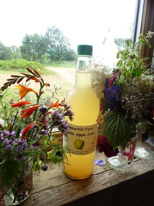 Enjoy our farm produce, apple juice, eggs, honey & more