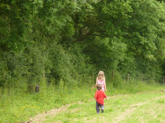 Grab a stick, roam free and explore the farm