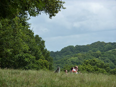 There are plenty of quiet spots ideal for a picnic or just to take a breather in the long grass