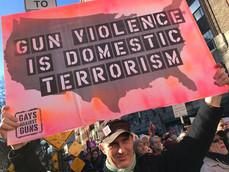 Gun Violence is Domestic Violence - john