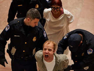 Eight Members of Gays Against Guns Arrested at US Senate Protest
