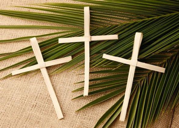 Palm-cross-2406825.jpg