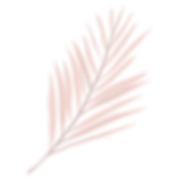 leaves-04.png