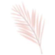 leaves-01.png