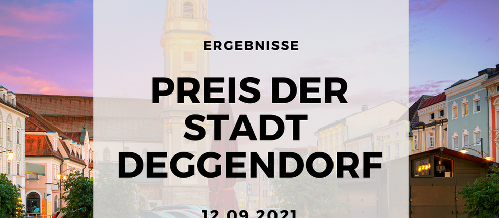 Preis der Stadt Deggendorf