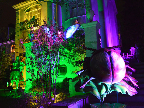 Parading at home: Krewe of House Floats keeps Mardi Gras spirit alive