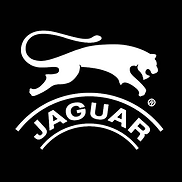 Jaguar Shoes